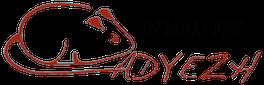 LogoSiteadyezh